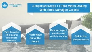 4 Important Steps To Take When Dealing With Flood Damaged Carpets