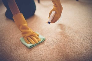 5 Top Carpet Cleaning Tips to Remove stains