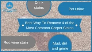 Best Way To Remove 4 of the Most Common Carpet Stains