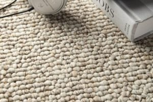Essential Carpet Cleaning Tips