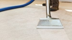 Knowing when to book a professional carpet clean