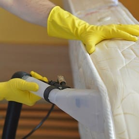 Mattress Cleaning Carpet Cleaning Kings