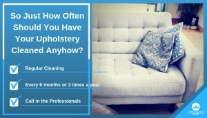 So Just How Often Should You Have Your Upholstery Cleaned Anyhow_