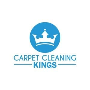 The Right Carpet Cleaning Company For You