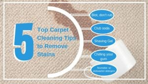 Top Carpet Cleaning Tips to Remove Stains