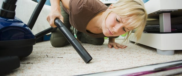 Whats Lurking in Your Carpet