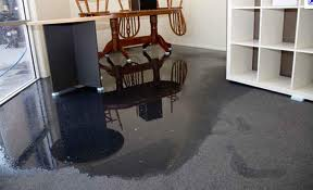 Why A Wet Carpet Is A Big Deal