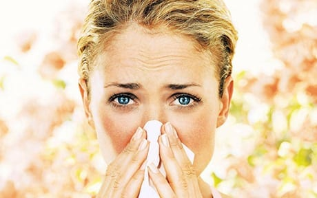 allergy treatment carpet cleaning