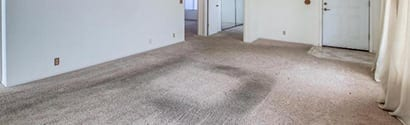 Heavy Duty Carpet Cleaning Service