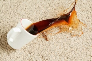 Carpet Stains Until A Professional Carpet Cleaner Arrives