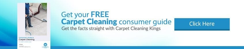 Carpet Cleaning Banner Book
