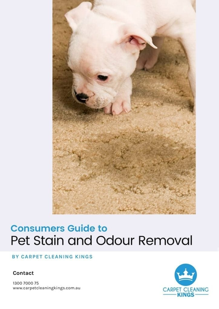 Consumer Guide Cover Book 2