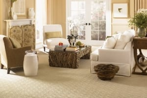 Keep Your Carpets Looking Great And Lasting longer