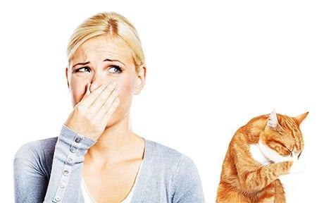 urine treatment odour