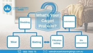 What's Your Carpet Problem_