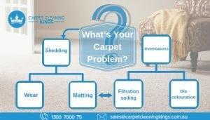 What's Your Carpet Problem_