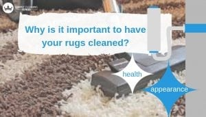 Why is it important to have your rugs cleaned_