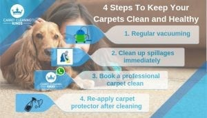 4 Steps To Keep Your Carpets Clean and Healthy