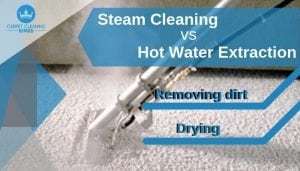 Steam Cleaning vs Hot Water Extraction