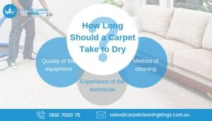 How Long Should a Carpet Take to Dry