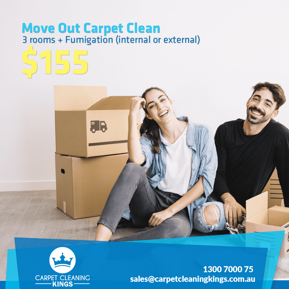 Carpet Cleaning Monthly Specials for October