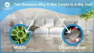 Two Reasons Why A Wet Carpet Is A Big Deal